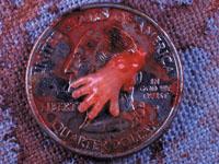 10 Week Abortion Image